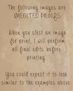 Unedited Proofs