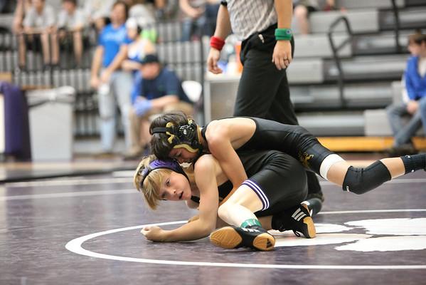 Tiger Brawl, Wrestling