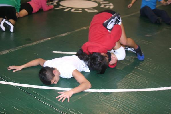 Wrestling 2011