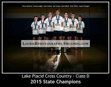 11x14 2015 State Champions photo