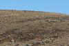 Yakima_Skyline-0283