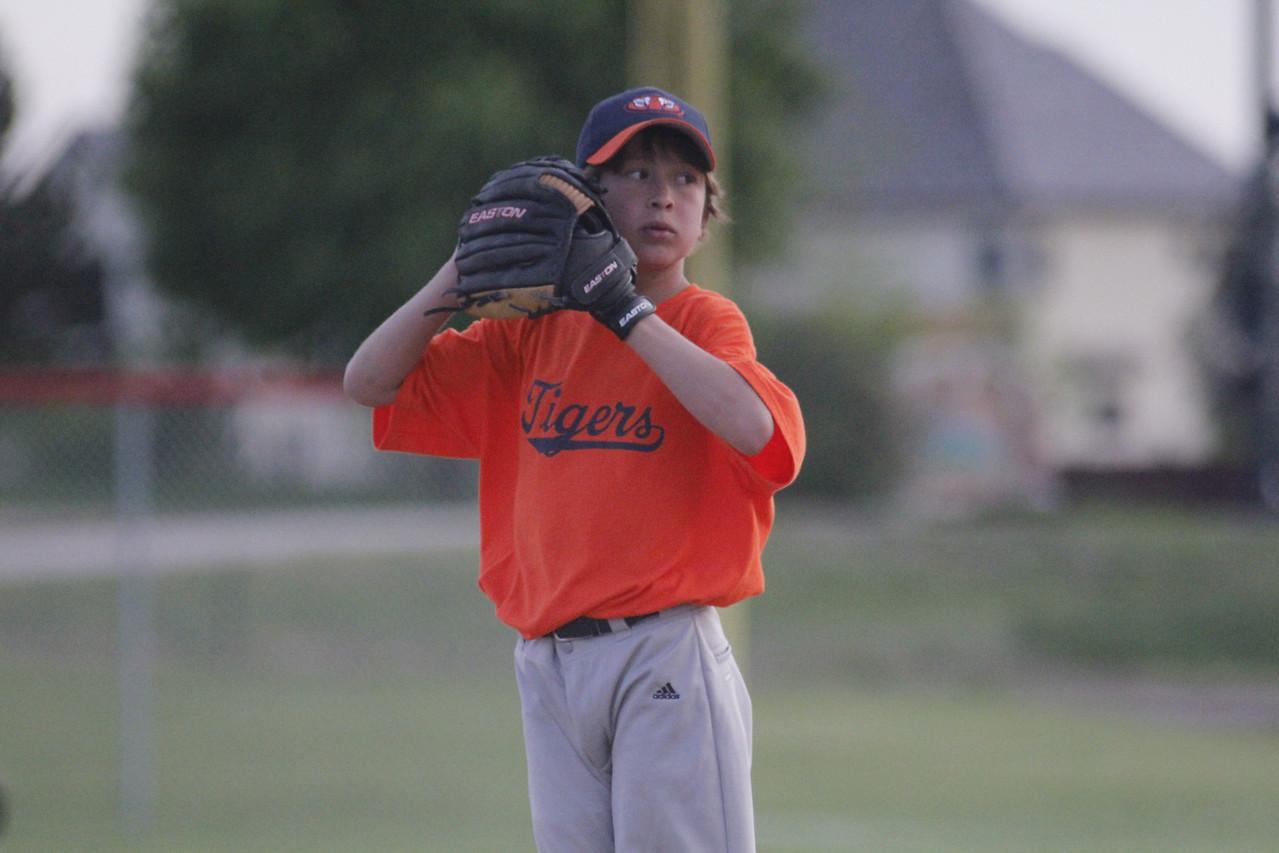 Tigers 5-31 (24)