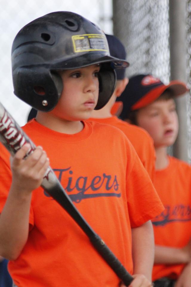 Tigers 5-31 (44)