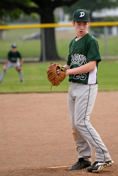 2014 Dragons Baseball