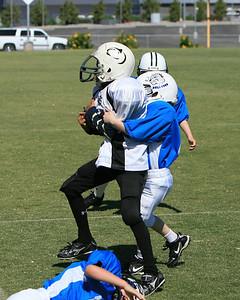 Bulldogs Football, 2011, NYS NE 1490, Final Game May 28, 2011
