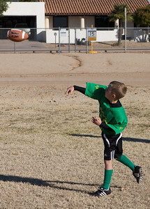 2009 Tigers - NYS Flag Football