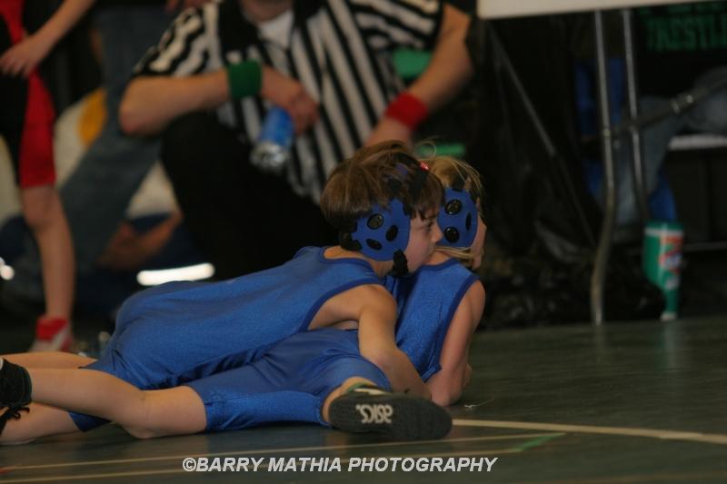 Wrestling 13151