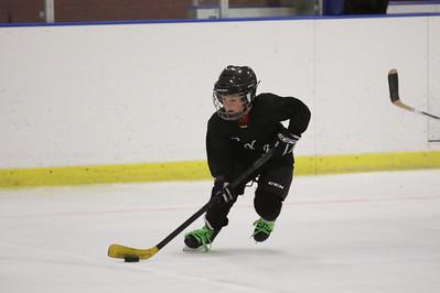 2013 MITES - Sabres vs Leafs - Gilbert Polar Ice - June24