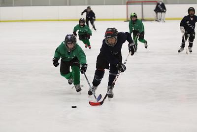 2012 PYHL Mites - Huskies vs Whalers June 18th Polar Ice Gilbert