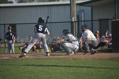 PA vs LEE Baseball 048
