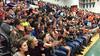 Danville fans
