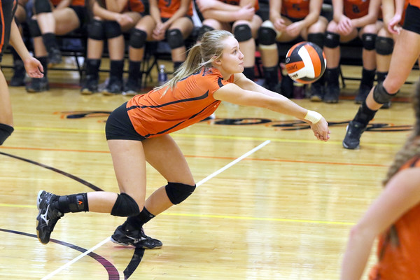 Mediapolis' Shelby Woodruff goes for a dig against Danville October 24th during a Class 2A Region 8 Quarterfinal in Mediapolis<br /> Photo by Donald K. Aliprandi