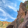 Rachel Berger climbing in Arizona