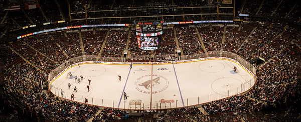 Arizona Coyotes Stadium