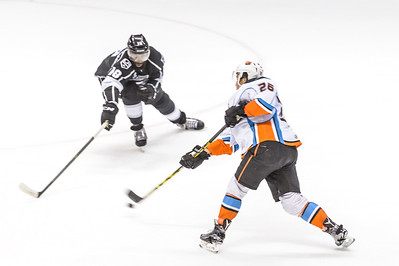 SD Gulls vs Reign 2016 Playoffs