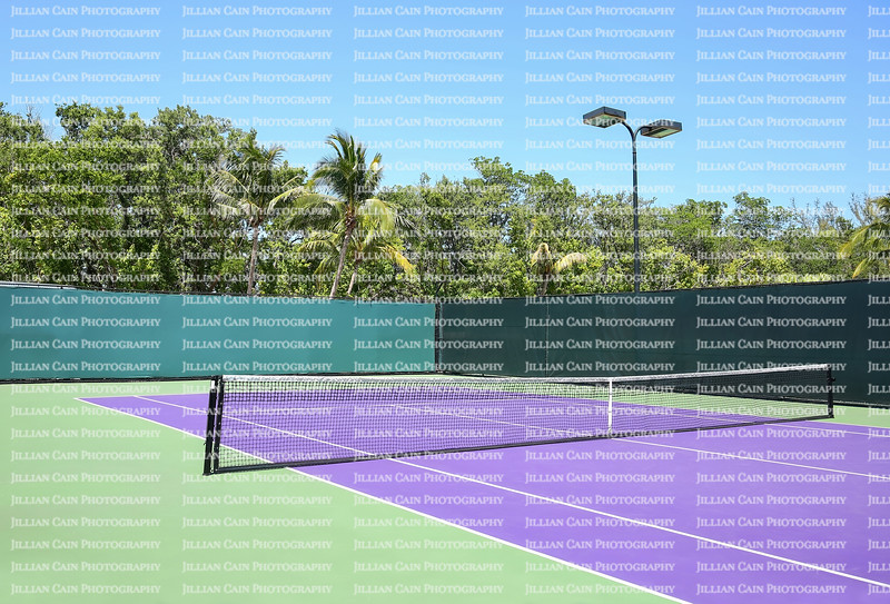 Colorful purple and green tennis court in a tropical location.