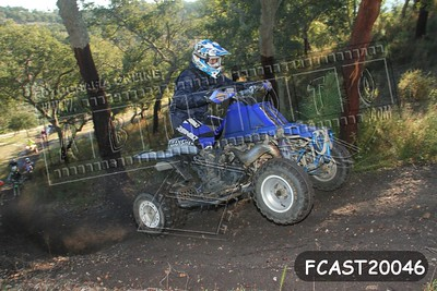 FCAST20046