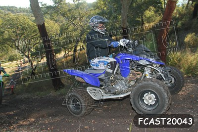 FCAST20043