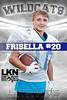 Frisella 2014