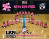 2016 LNHS VB Dig Pink