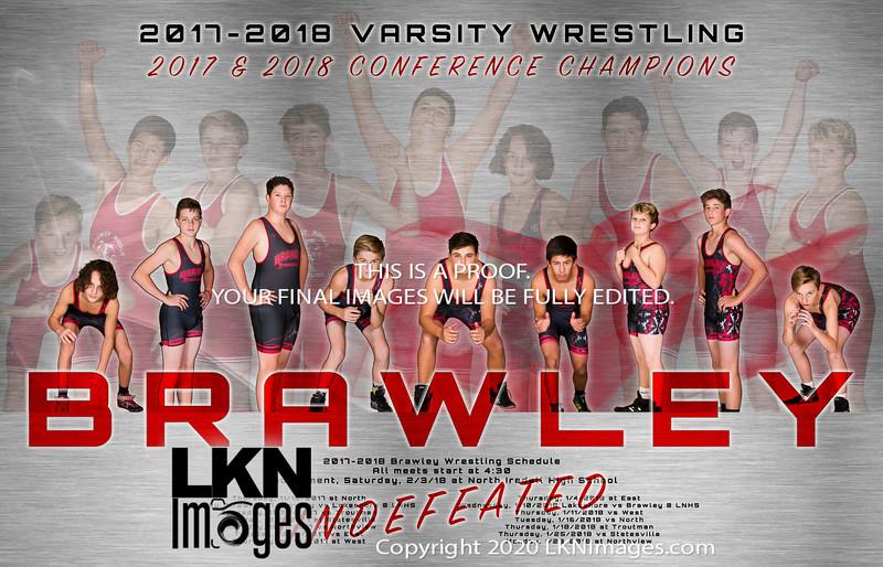 Wrestling banner 2018 Poster no sponsors