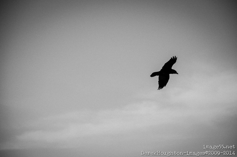 20140908-_DHI4185