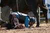 2011 June 26 - Meaford - The Ram Rodeo Tour rolled into the Meaford Fairgrounds this weekend.  The crowd was treated to a high energy event that showcased many talented rodeo riders.  A bull rider hits the ground hard.<br /> Photo Credit: Darren Eagles
