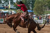 2012 Aug 24-26 - Cedar Run Horse Park - Thornbury -  The Cedar Run Horse Park was the location for the Rawhide Rodeo this past weekend.  The RCMP Musical Ride was on hand and performed an incredible show.<br /> Photo Credit: Darren Eagles