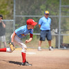 Little League Cardinals 2013 :