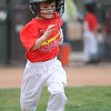 Instructional Little League Cardinals - 2013 :