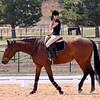 Horse Back 3