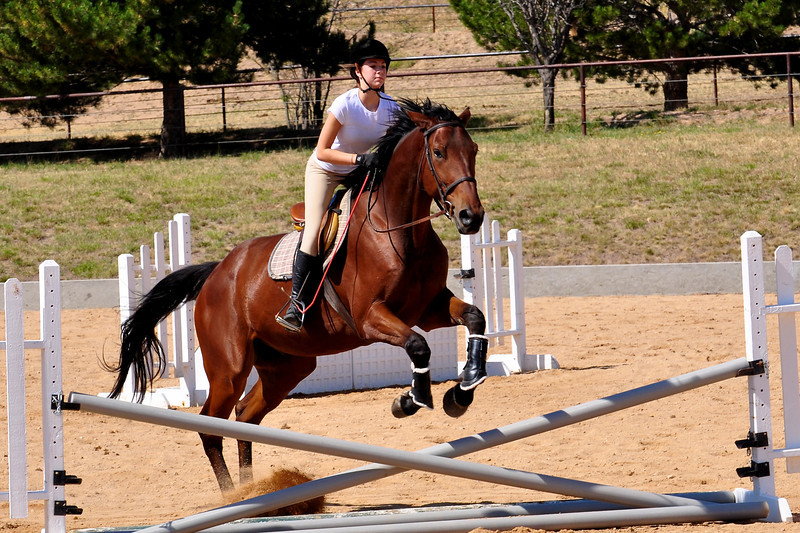 Horse Back 2