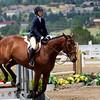 Horse Back 1