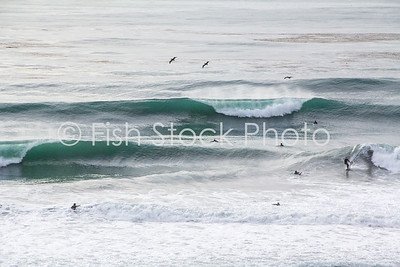 Surf Encinitas California
