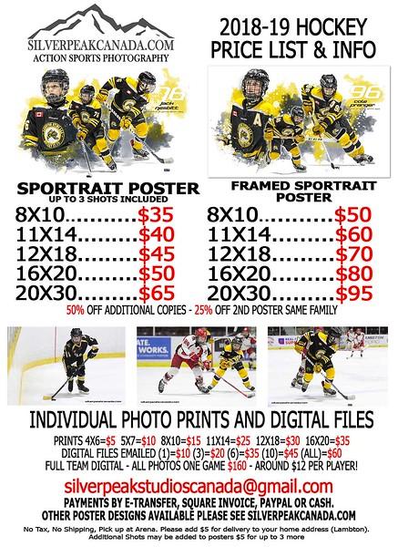 2018 Hockey Flyer