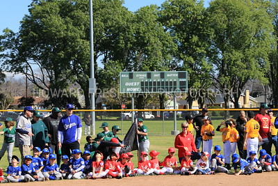 Little League Opening Day 2019