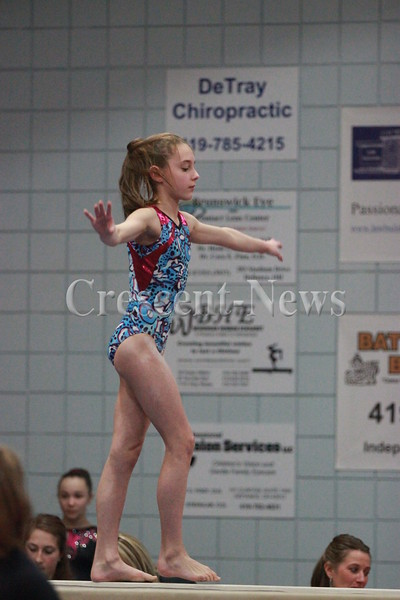 03-21-15 Sports 2015 NW Ohio YMCA District Gymnastics Championship