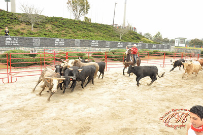 Great Bull Run - GA