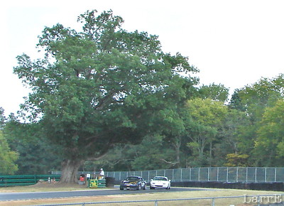 SCCA... Sports Car Club of America is an organization that has been holding races for over 63 years. I've been watching SCCA races....for more than 50 years.