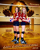 "8""x10"" / 16""x20"" NBHS Volleyball Senior Poster"