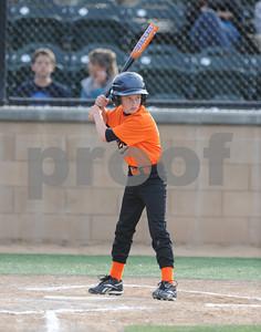 Minor Orioles