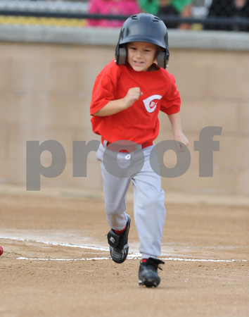LNLL 2010 Action Photos - Tball Reds