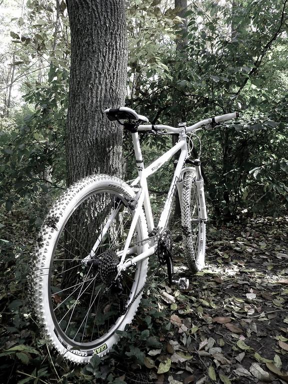 2013-Oct: The White Bike Build