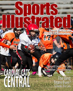 SI Cover 4