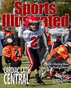 SI Cover 3