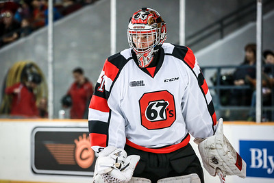 67s vs IceDogs - Oct 10, 2014
