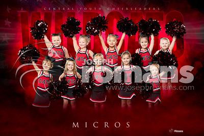 Micro Cheer