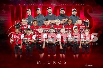 Micro Football