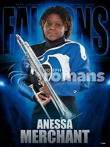 Aneesa Merchant