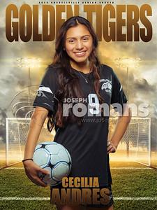 Cecilia Andres